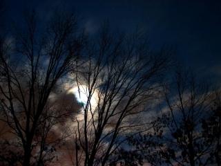 'Una notte di inverno...'