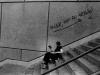 'Lettrice su scalinata' (Ginevra)
