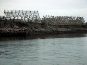 'Essicazione dei merluzzi', isole Lofoten