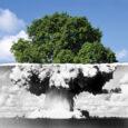"""articolo di Michele Boato presidente de L'Ecoistituto del Veneto """"Alex Langer"""" e direttore della rivista """"Gaia"""" Chiunque lo proponga, da destra o da sinistra, finge di ignorare che: 1. Il nucleare non è sicuro, è a rischio di incidenti catastrofici Nel 1979 ad Harrisburg (Usa) si è sfiorata la """"fusione del nocciolo"""", che c'è stata a Cernobyl (Ucraina) il 26 aprile 1986, con decine di migliaia di tumori e leucemie nei 20 anni successivi e più di 1000 morti per tumore tra i soldati intervenuti; ha contaminato l'acqua di 30 milioni di ucraini; irradiato 9 milioni di persone. Oggi, nelle […]"""