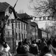 """Quest'anno """"La Ruota"""", dopo nove anni, non celebrerà con una sua iniziativa, la """"Giornata della Memoria"""" e non per un improvviso attacco di negazionismo, ma perché sente forte il bisogno di una pausa di riflessione alla ricerca di forme nuove e significative di comunicazione sul tema della Shoah. Il nostro timore infatti è quello di cadere nel cliché del rito che si ripete, anno dopo anno, sempre uguale a se stesso. """"Oggi Auschwitz è un simbolo, una metafora del male assoluto. E come tutte le metafore rischia di perdere la sua fisicità, diventa una figura stilizzata, estetizzante, oggetto di opere […]"""